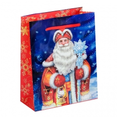 GiftPack Дед Мороз Пакет ламинат вертикальный, 18х23х8см