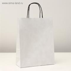 GiftPack Пакет крафт белый с черными ручками 25x11x32см 1шт