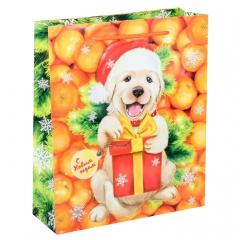 GiftPack Мандариновый рай Пакет ламинат вертикальный, 12x15x5.5см