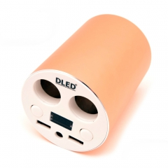 Зарядное устройство в салон авто Dled Supercharge
